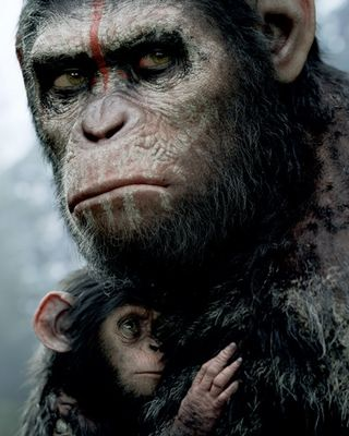 New Poster For Dawn Of Planet Of The Apes Planet Der Affen Sehenswerte Filme Gute Filme