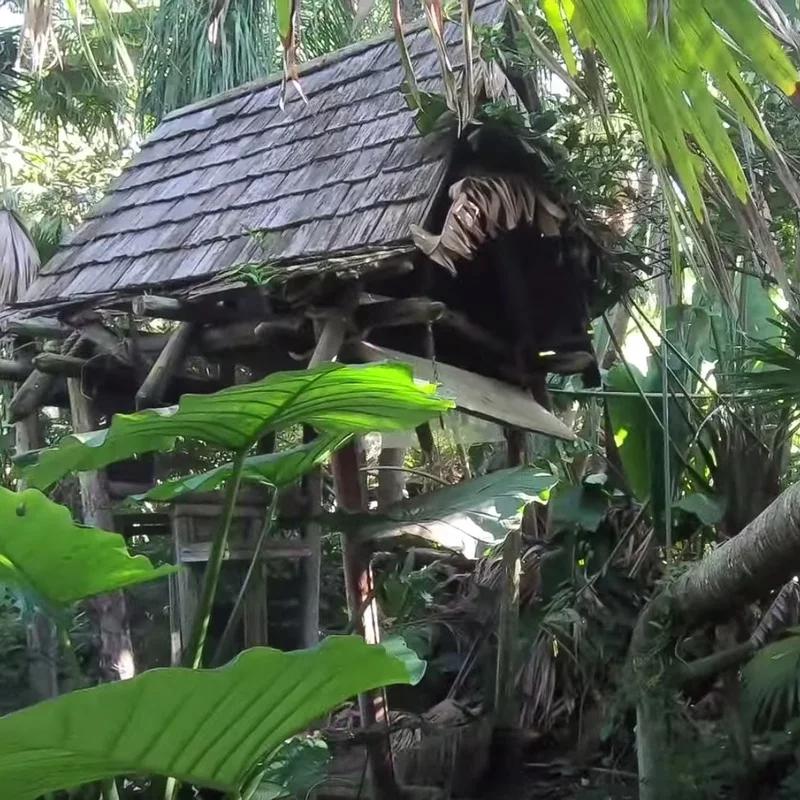 Disney World's Abandoned Island: The Mystery Behind