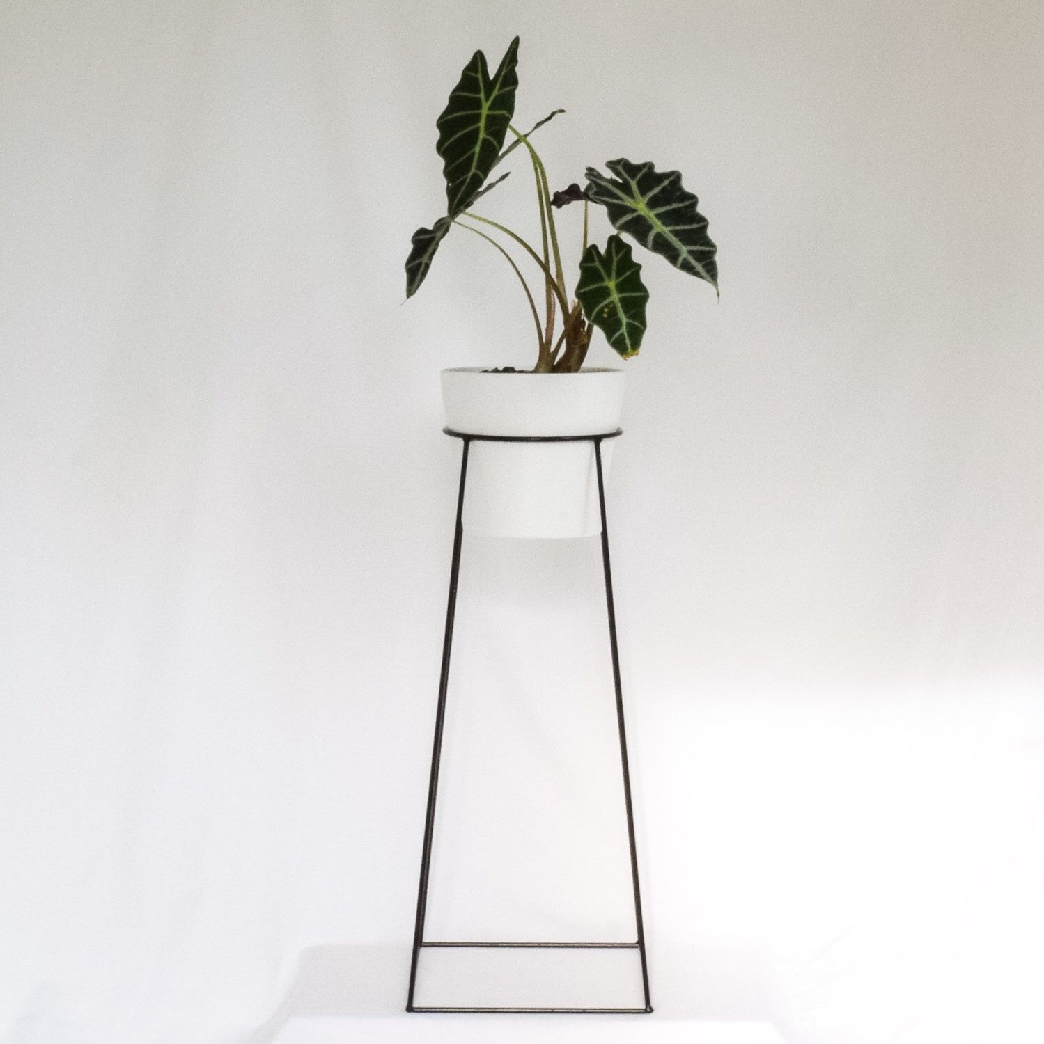 The Tulameen  Wire Steel Plant Stand By Bluecaribouca On