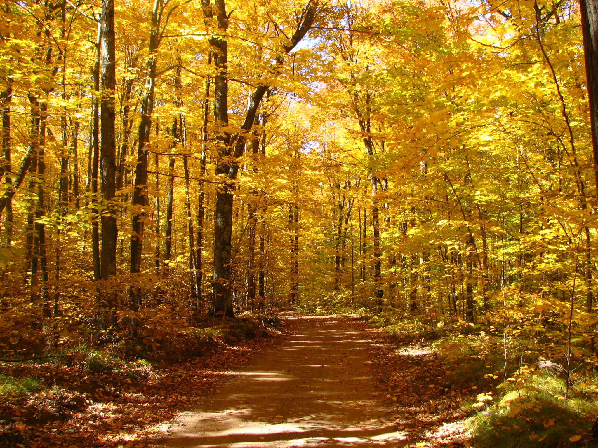 Check out Florence on the Fall Color Report on TravelWisconsin.com