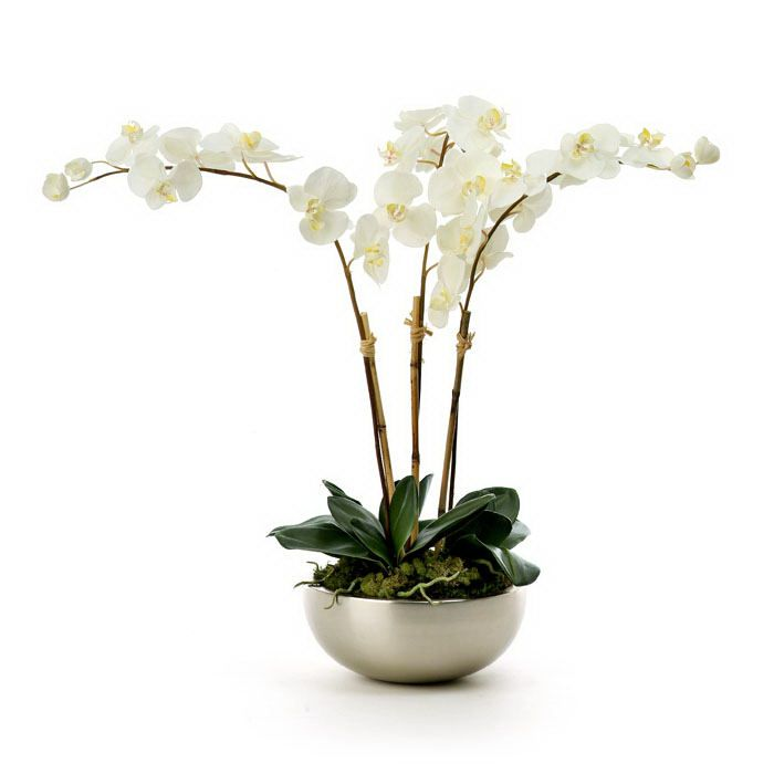 White orchid silver pot decoration house interiors for Artificial plants for interior decoration