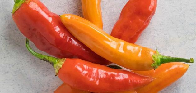 فوائد الفلفل الحار للجنس Stuffed Peppers Vegetables Food