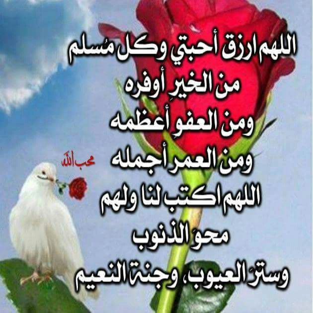 اللهم ارزق احبتي وكل مسلم من الخير اوفره Islam Peace Spirituality