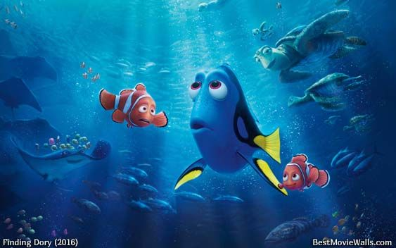 Where is Dory now? Can Nemo and Marlin help her? #FindingDory
