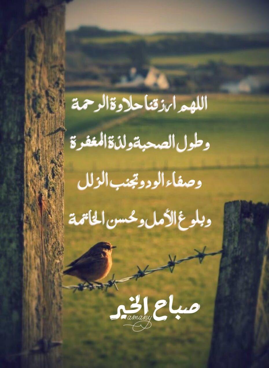 صباح الخير صباح النور صباح الايمان صباح الدعاء صباح التفاؤل صباح السعادة صباح الامل صباح الورد Morning Images Islamic Pictures Morning Greeting