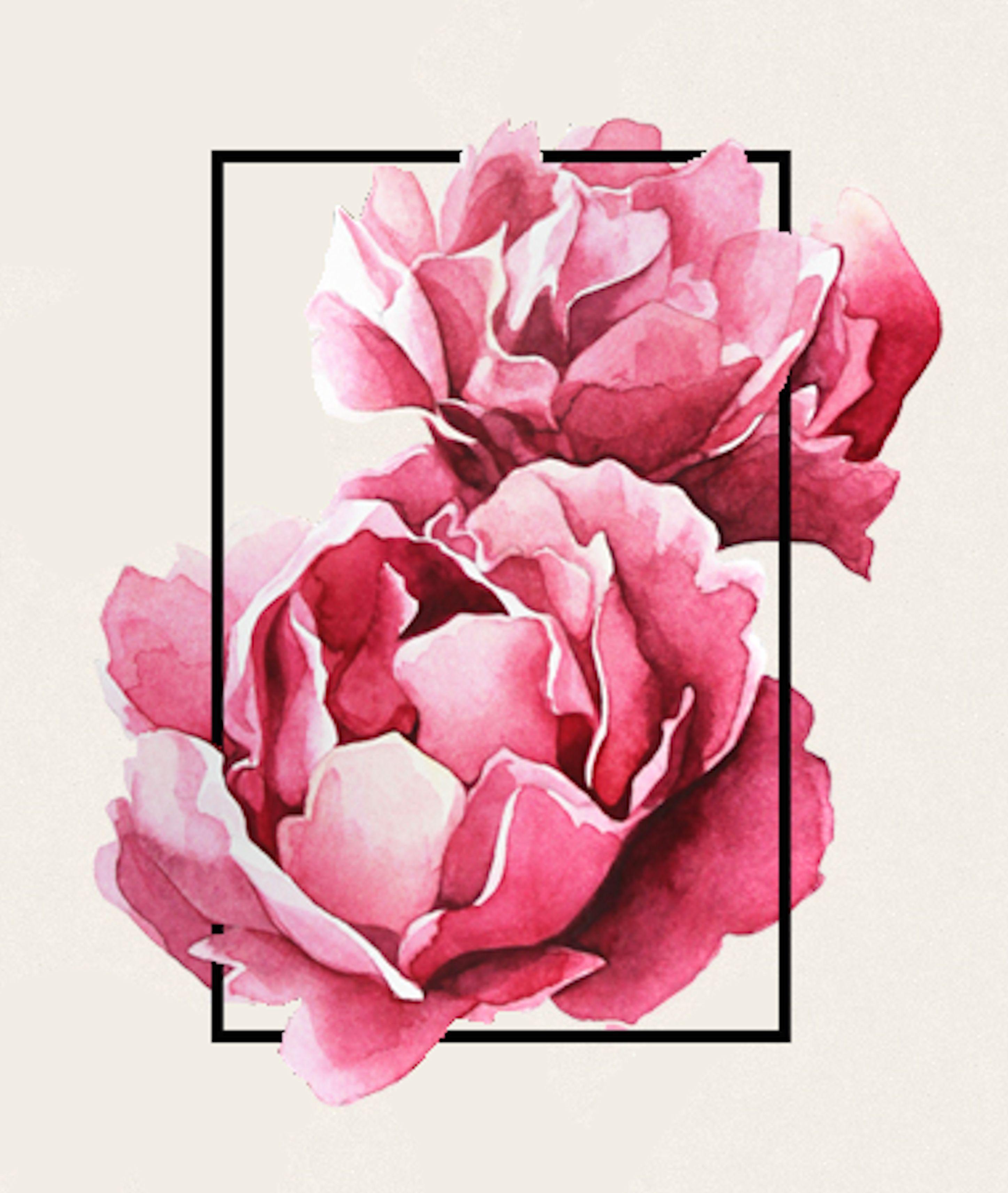 Une Pivoine Sur La Main Tatouage Tatouage Rose
