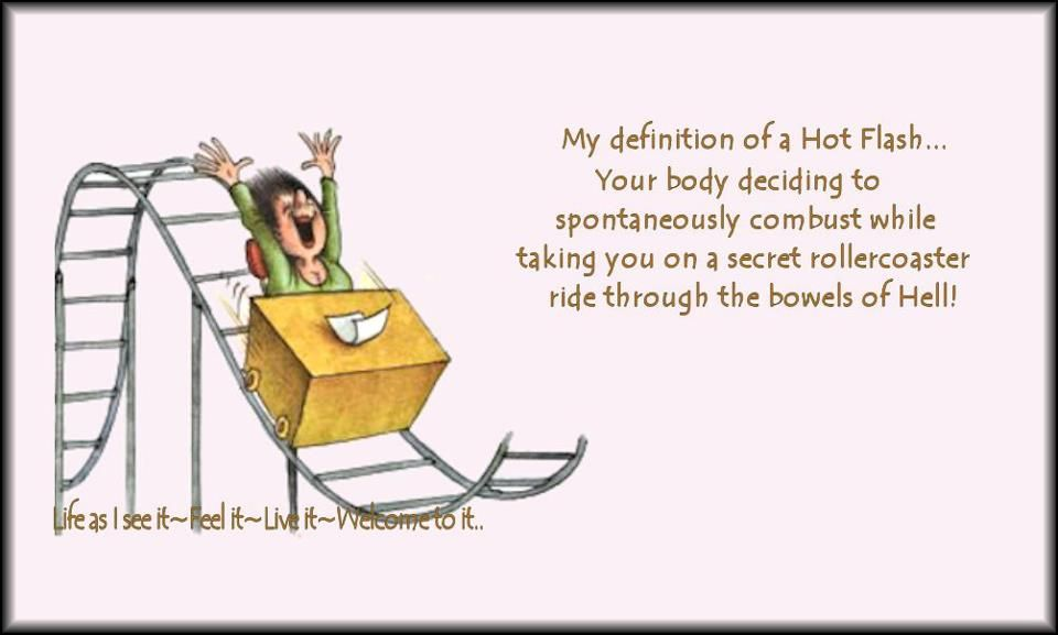 Pinterest Jokes: Definition Of Hot Flashes