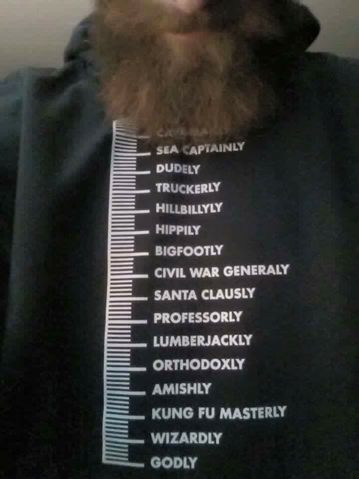 Beard Growth Chart Shirt It S About To Be That Time Again