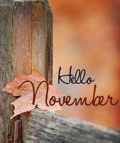 Hello  November .... #hellonovemberwallpaper