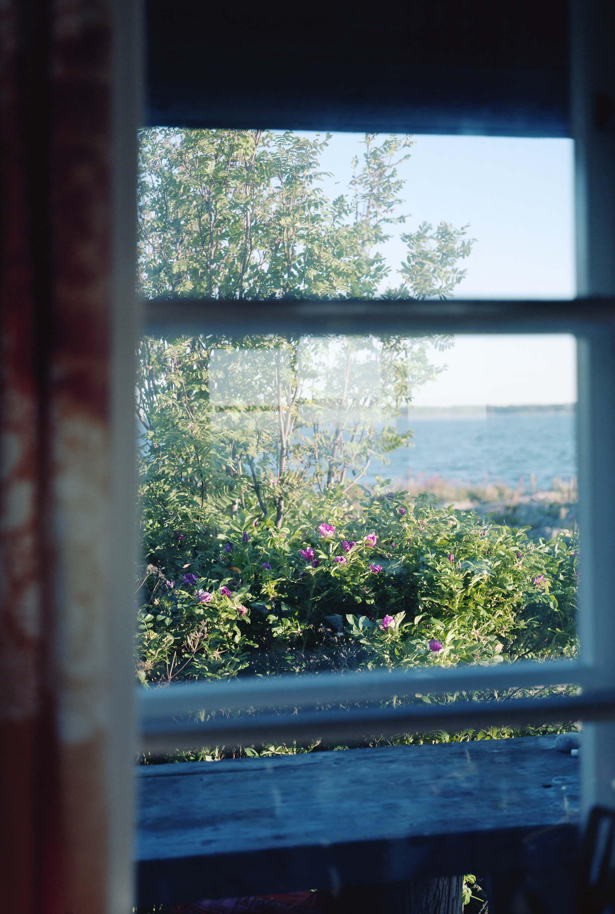 第一回 トーベ ヤンソンの窓 ホンマタカシ 写真 写真家