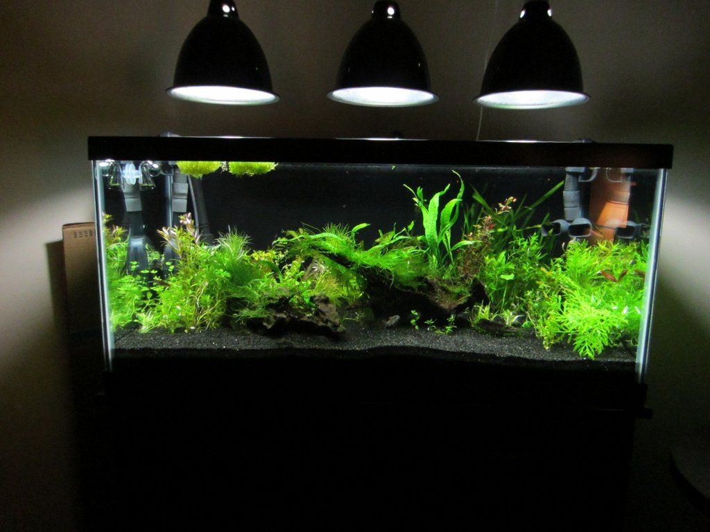 my inexpensive cfl light solution page 2 the planted tank forum