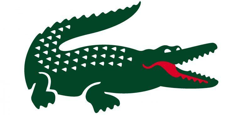 Logo Lacoste Lacoste Logo Dessin Crocodile Fond D Ecran Lacoste
