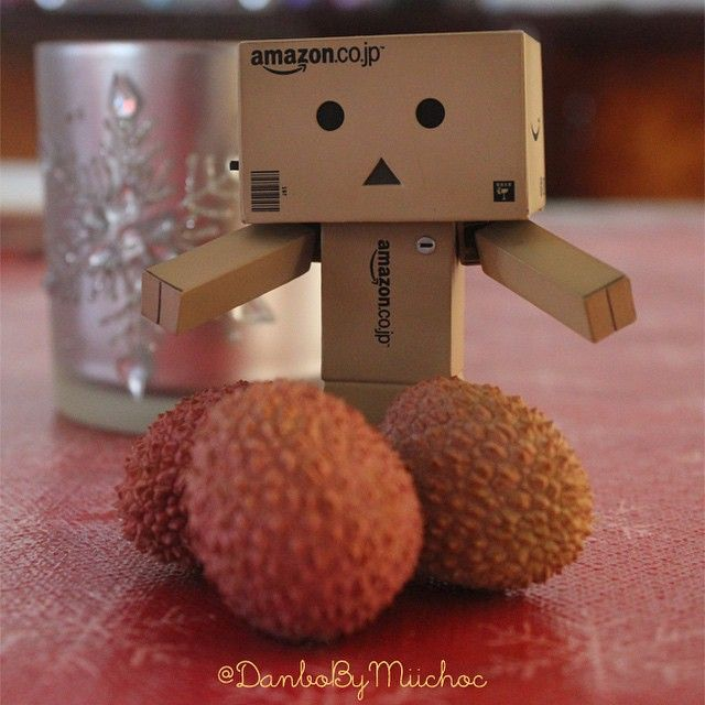 Danbo recommends eating more fruits ^_^ #Danbo #Fruits #Resolution2015