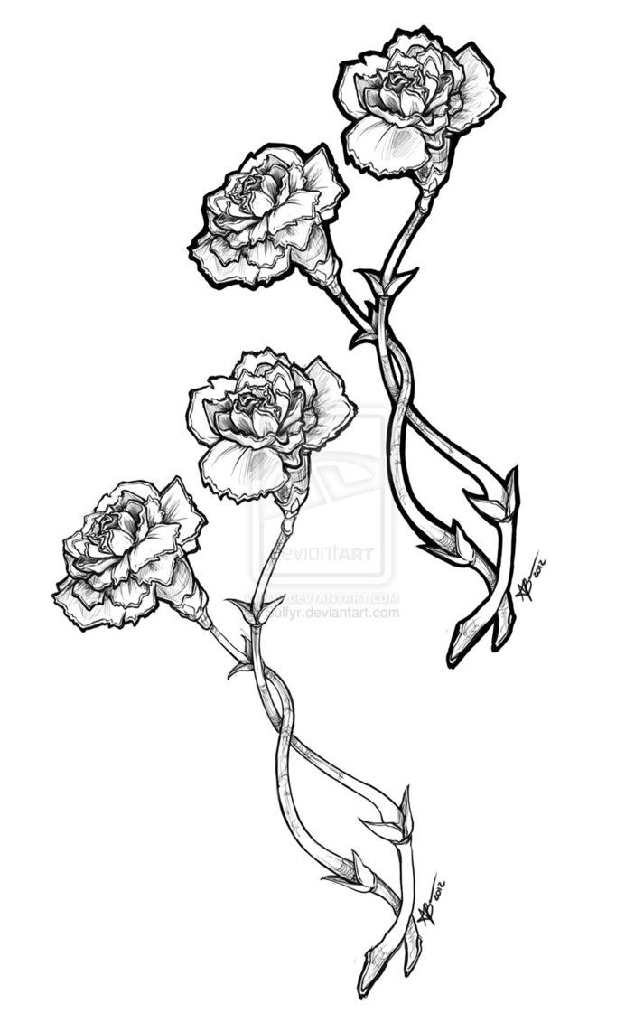 Carnation flower coloring pages - Carnation Flower Tattoo Carnation Tattoos