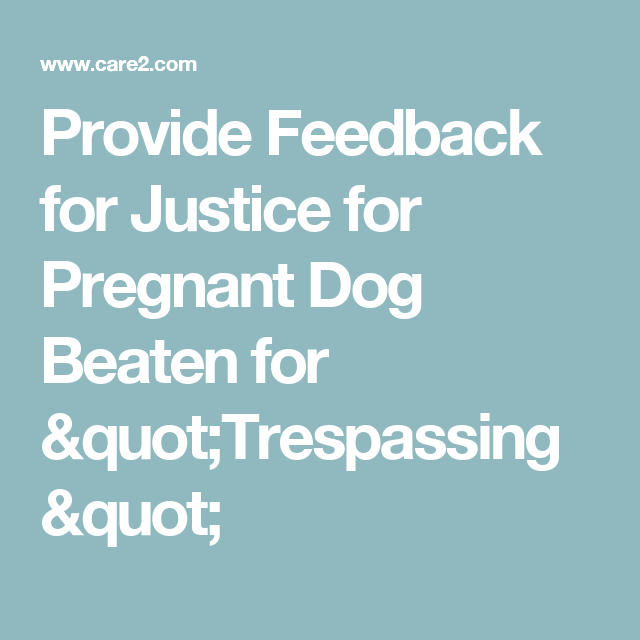 """Provide Feedback for Justice for Pregnant Dog Beaten for """"Trespassing"""""""