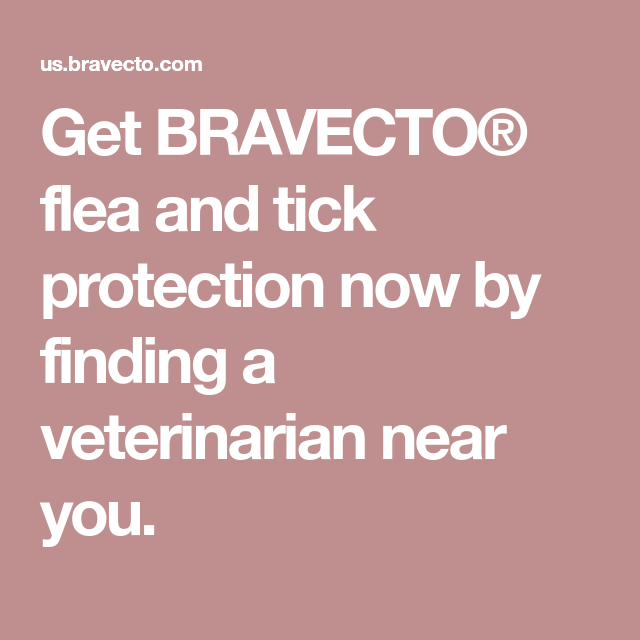 Get BRAVECTO® flea and tick protection now by finding a
