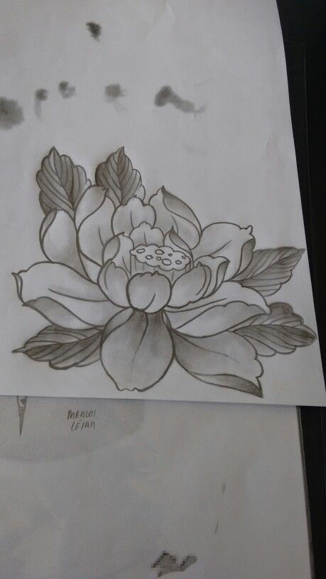 Japanese Lotus Tattoo Sample Tattoo Samples Japanese Flower Tattoo Lotus Tattoo Design