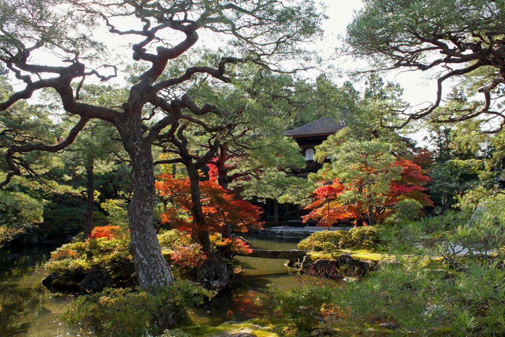 De Tokyo à Kyoto: voyage initiatique au Japon
