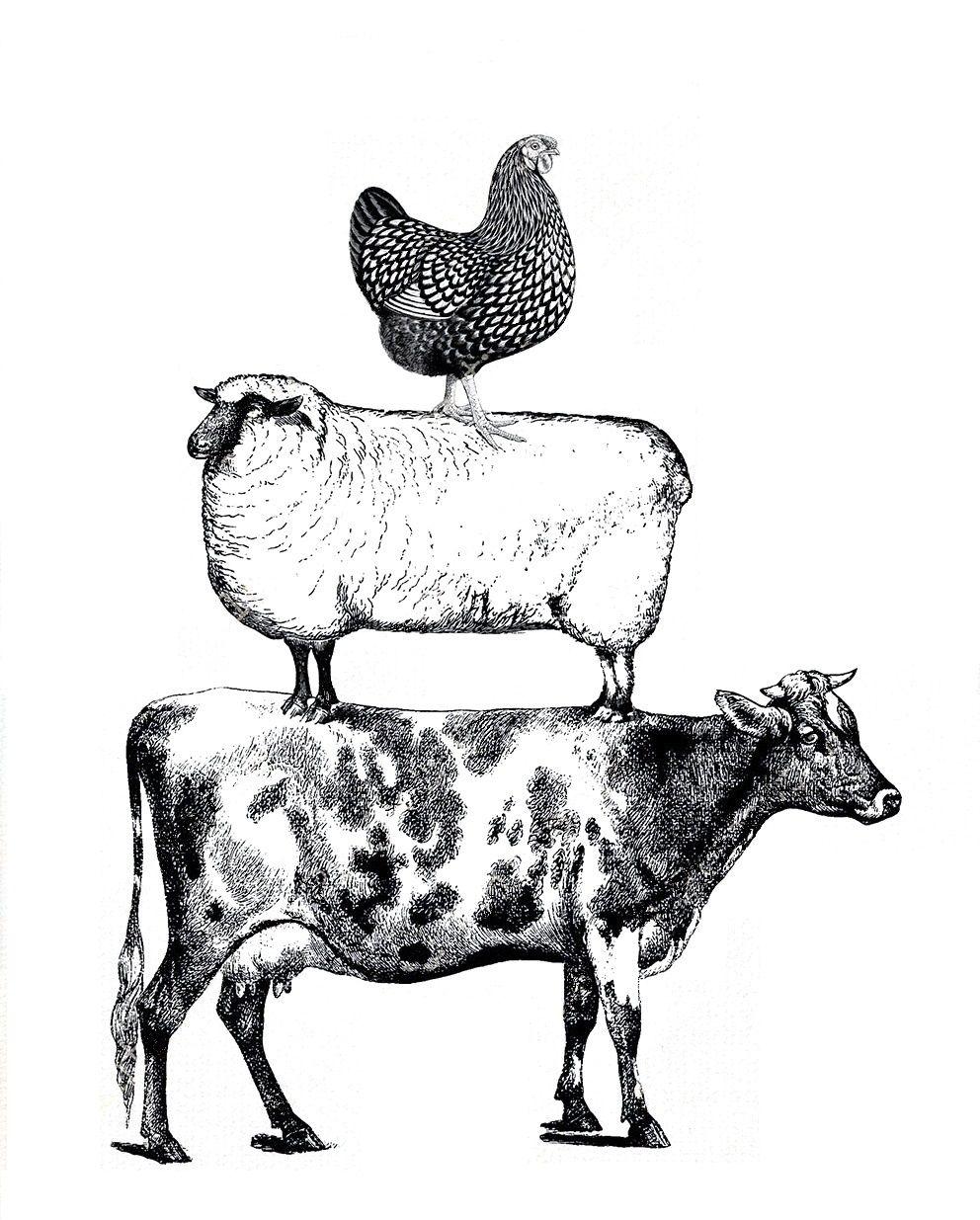 Pin By Pamela Goni On Cinnamoncreek By Druann Jefferies Favorites Art Farm Animals Animals