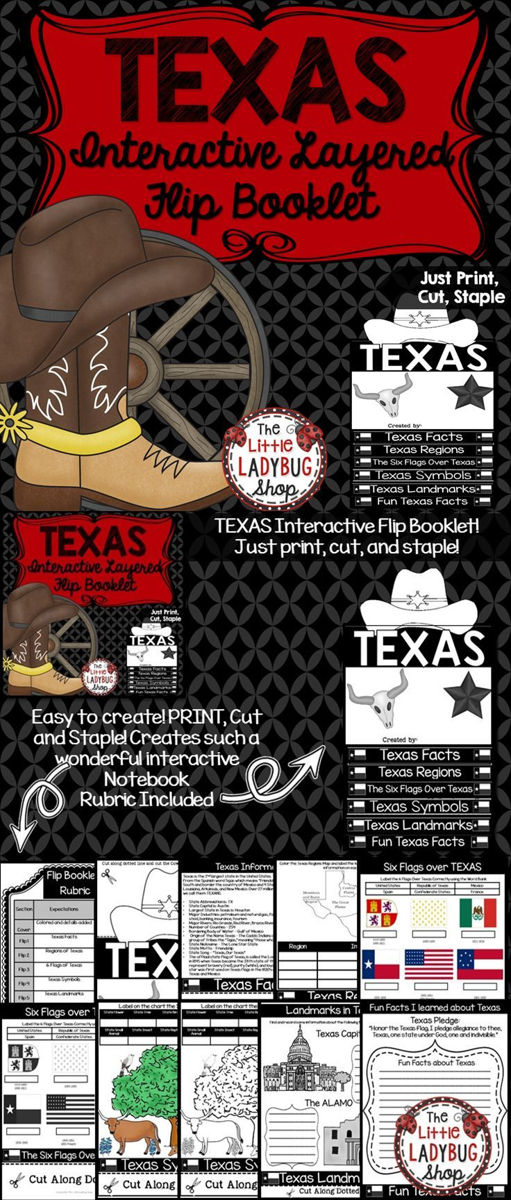 Texas Research Flip Book Texas Symbols Landmarks More Texas