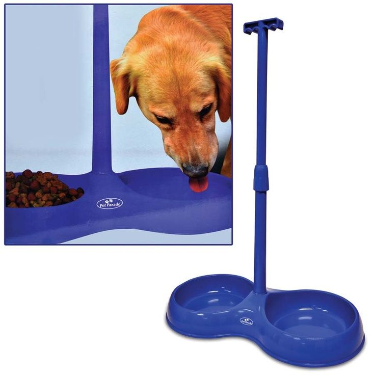 No Bend Pet Bowl Repinned by SOS Inc. Resources http://pinterest.com ...