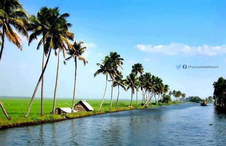 Natural Beauty Of Kerala Kerala Special Pinterest Kerala