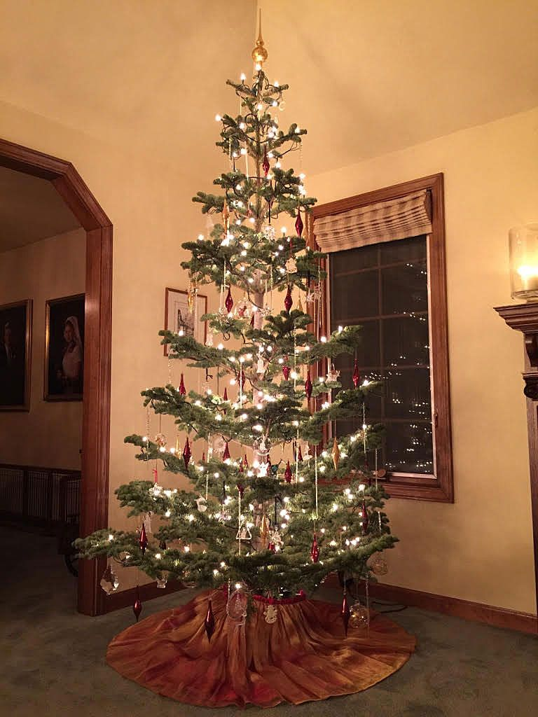 old fashioned christmas tree silvertip fur old fashion christmas tree fir christmas tree beautiful