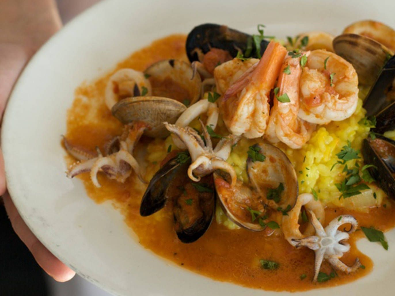 Best Italian Restaurants In Austin L Oca D Oro Andiamo Cantine And More