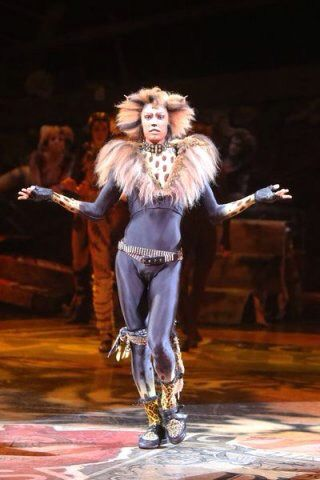 Adam Lake European Tent Tour Cats Musical Cats Cast Jellicle Cats
