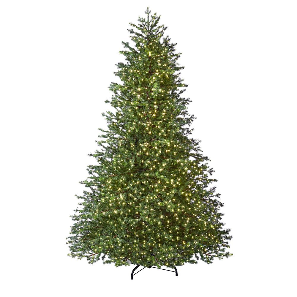 Home Accents Holiday 7.5 ft. Pre-Lit LED Natural Fir ...