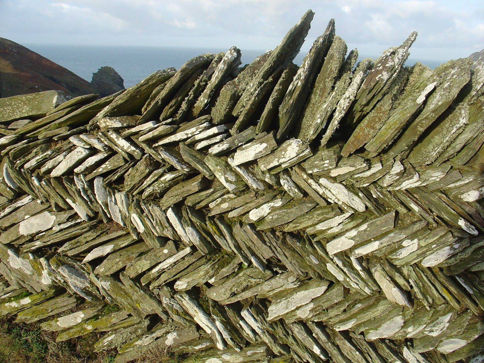 stacked fence   Cornwall, Port isaac, Roots