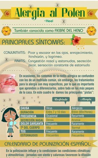 Beatriz Sanchez Google Alergias Al Polen Alergias Congestión Nasal