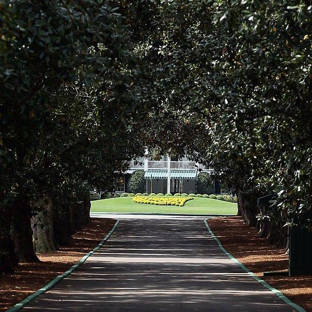 Golf Well Hello Magnolia Lane Exitedisanunderstatement Augusta