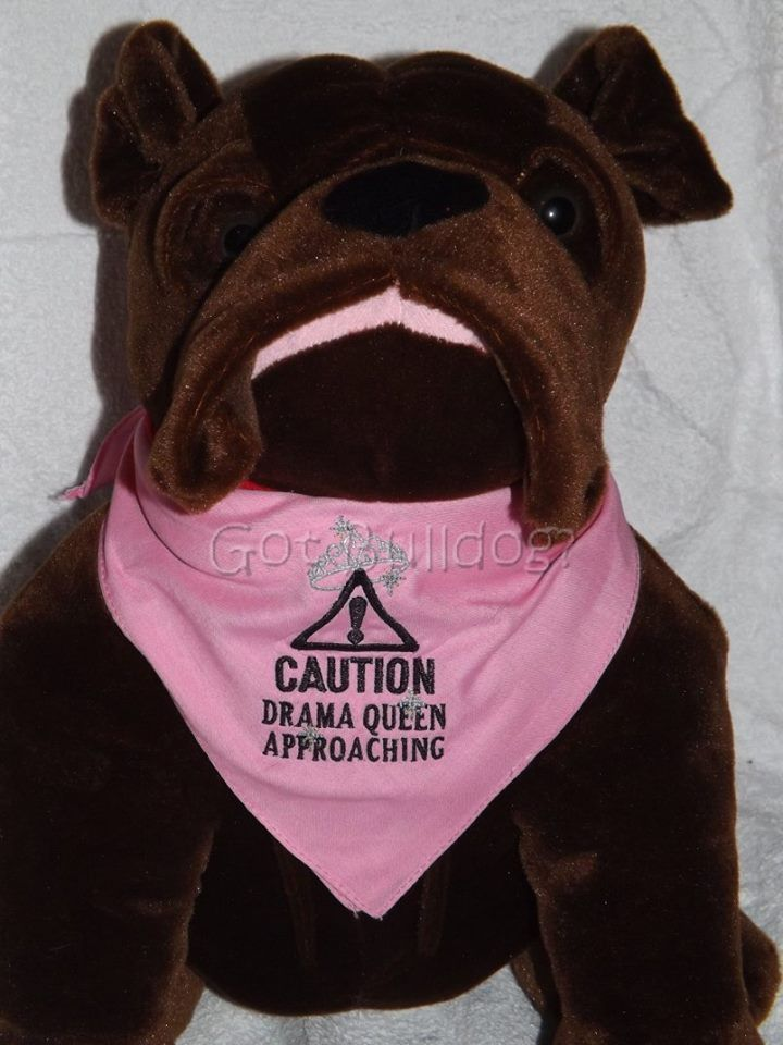 This tie on embroidered dog bandana with paw print is personalized with  your pups name and a coordinating paw print. It makes a wonderful gift for …