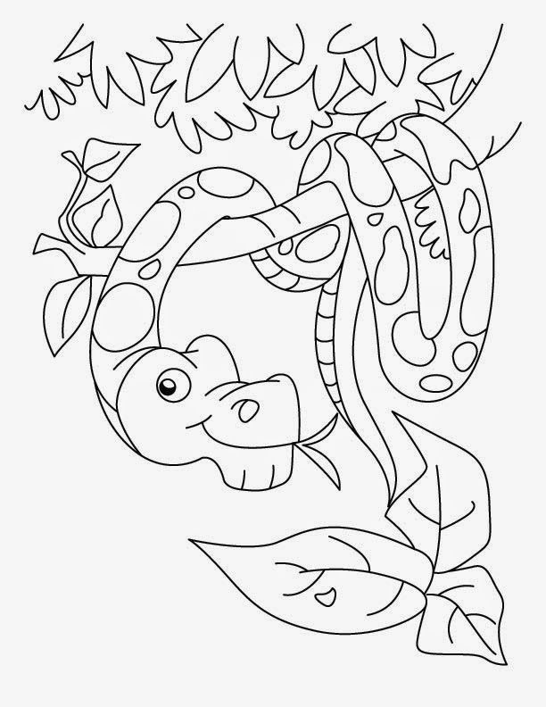 Printable Snake Coloring Page 6 Snake Coloring Pages
