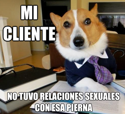 """Don't quote me on this.This is the actual translation.  """"My Client didn't have sexual relations with that Leg""""."""