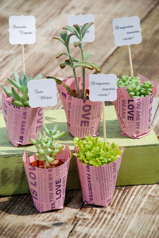 #flower #wedding #favors, #plantfavors, #pottery #pottedfavors #smallplant #gift, #succulents #pot #plante #marturii, #suculente #marturiinunta, #suculentemarturii, #marturiibotez, #ghivecemarturii , #suculentemarturii