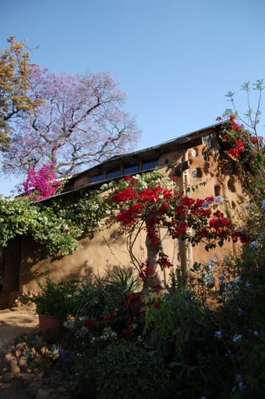 "Name: Marcella de Boom Occupation: ArtistLocation: Cullinan, South AfricaType: Cob houseSize: 970 sq.ft.Years lived in: 9 >> Marcella de Boom is no ordinary woman, she has built her entire home with her own two hands. The inspiration was ""creative poverty"", a wild dream of building a home, without spending more than $5000! The dream started to materialize when she met Interior Architect and Cob lover; Dawn McAdam by coincidence. Dawn is a conceptual genius and the two ..."