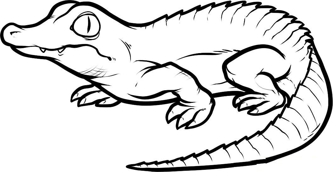 Free Printable Crocodile Coloring Pages For Kids | Alligators, Free ...