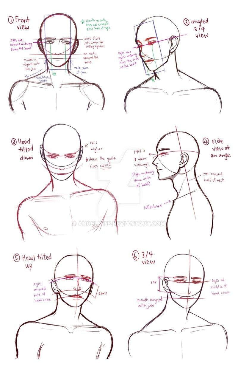 Drawing Busts By Angelkite On Deviantart In 2020 Art Reference Poses Art Reference Deviantart Drawings