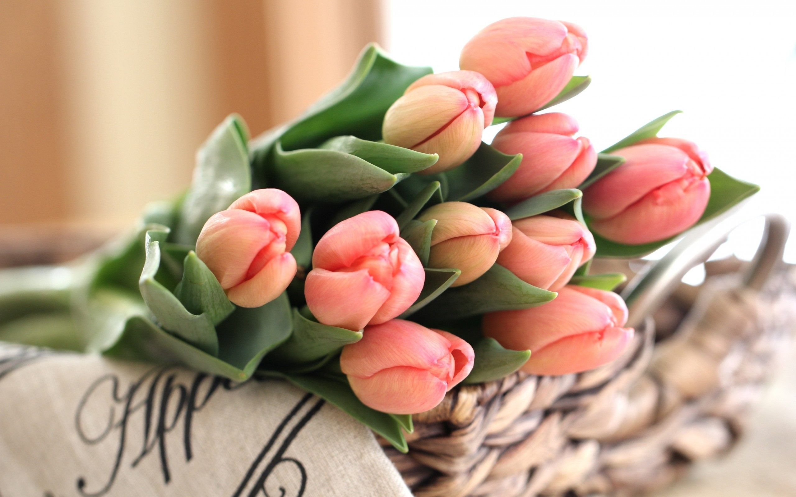 Tulip Bouquet Of Pink Tulips Wallpaper For Desktop Mobile High