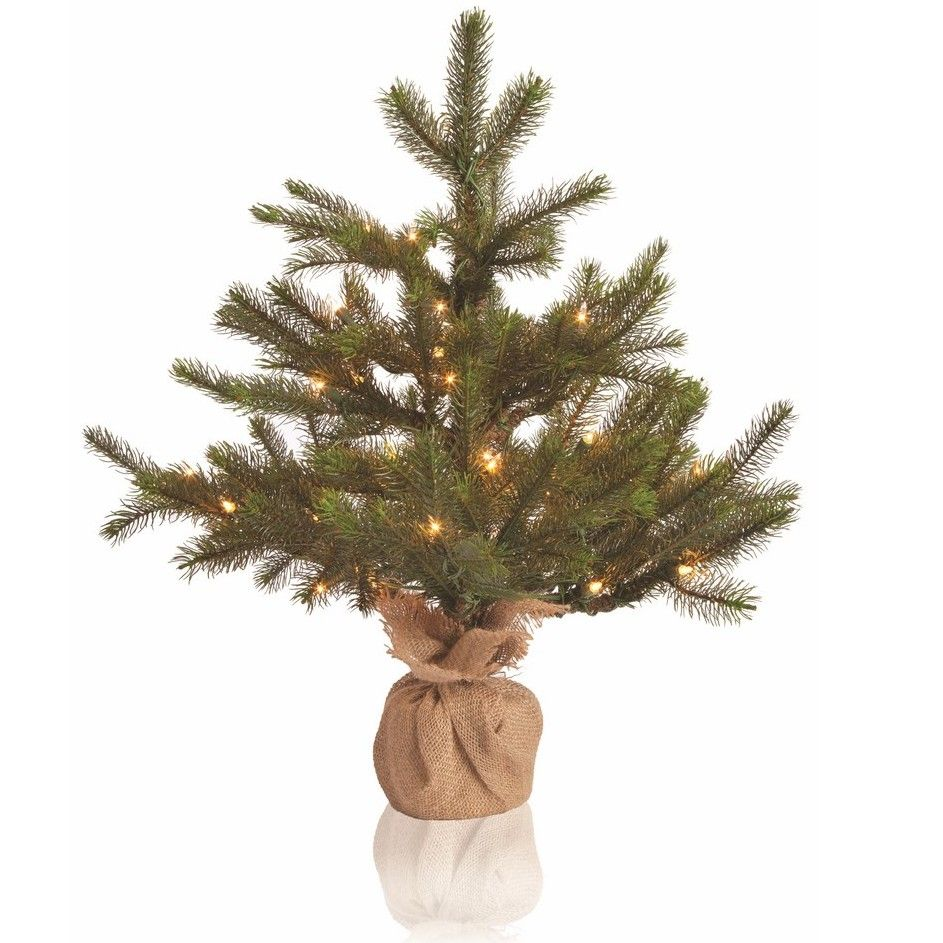 Sierra Lodge 2.2\' Green Noble Fir Christmas Tree with 50 Clear ...