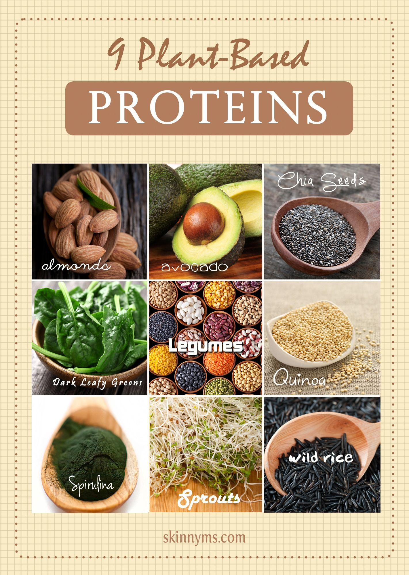 9 Plant-Based Proteins