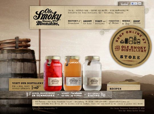 17 Best images about Retro Web Design on Pinterest | Typography ...
