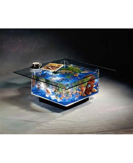 Bowled over: Fancy fish bowls that will make your goldfish feel like a living work of art