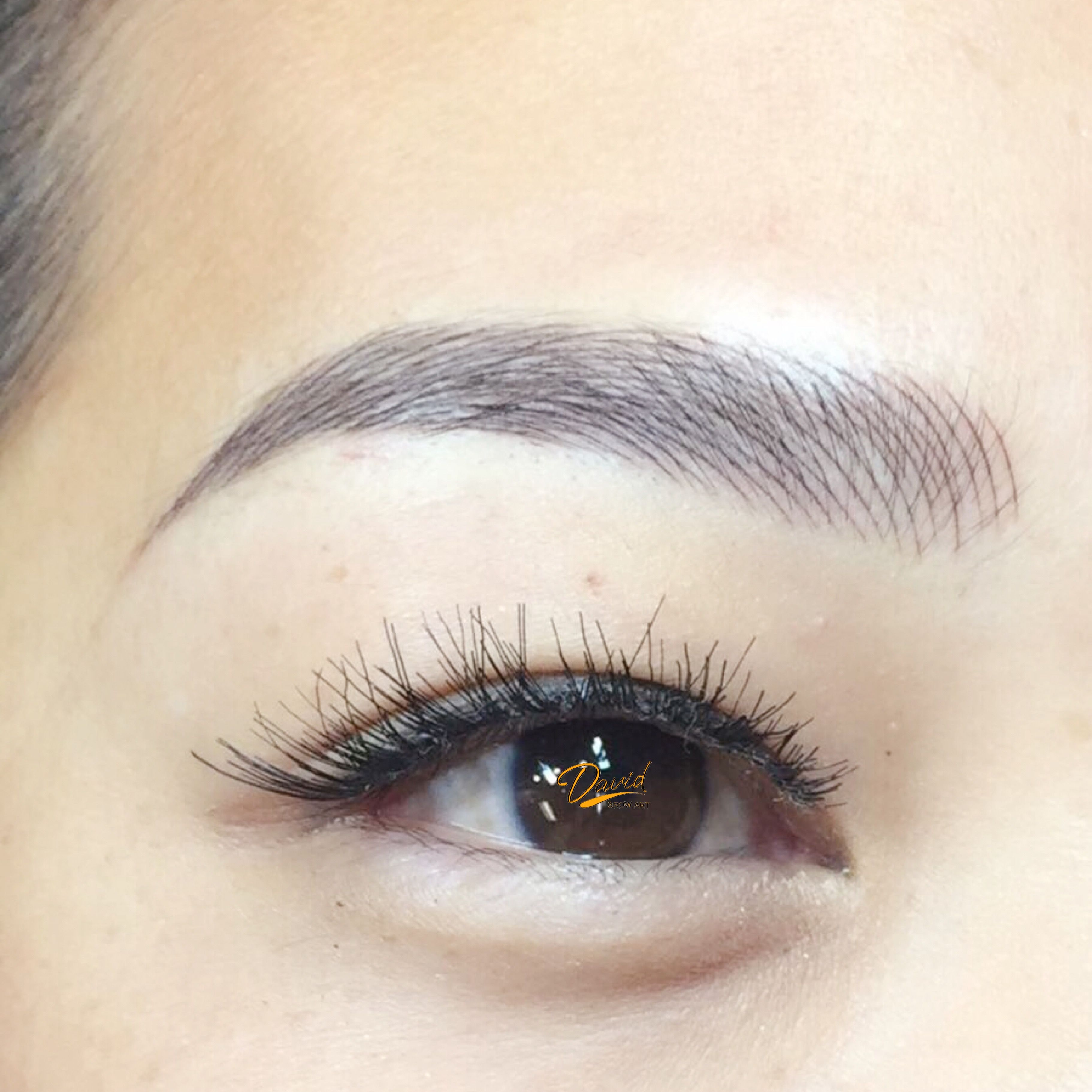 Image Taken Right After Microblading Eyebrow Class Live Model No