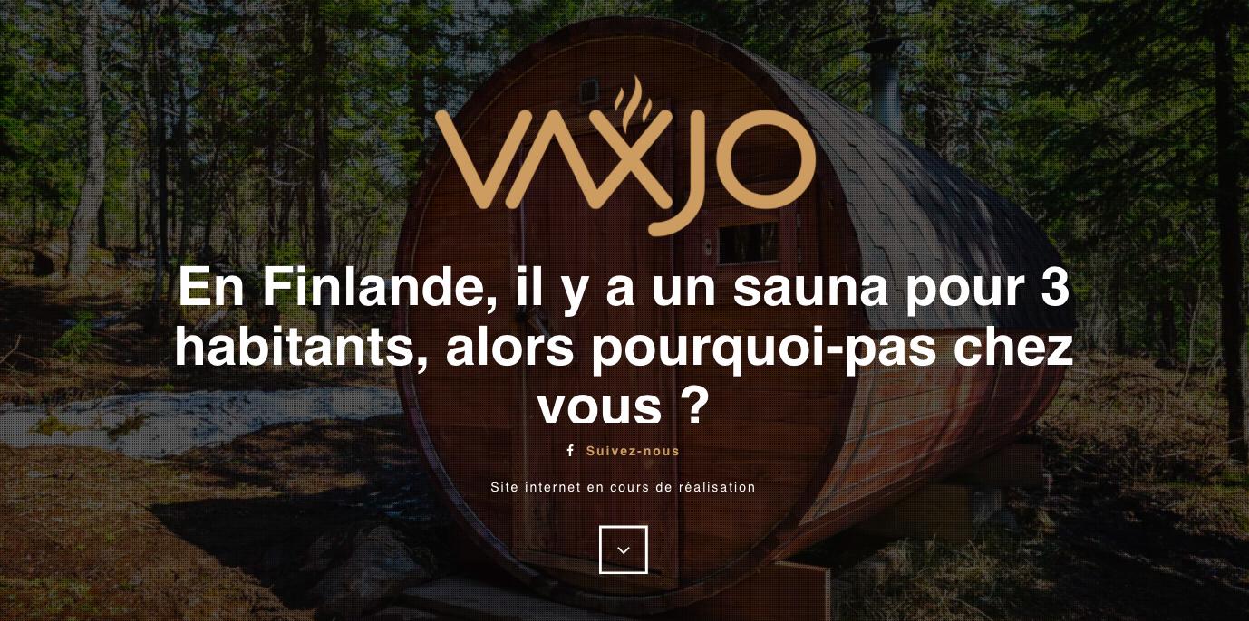 Prix D Un Sauna page d'accueil du site web de la marque belge de saunas