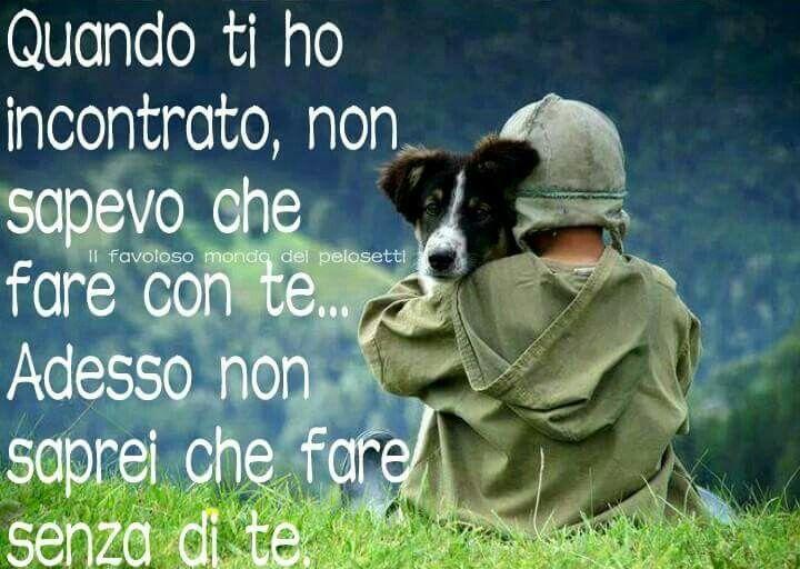 Amore Infinito Non Saprei Stare Senza Il Mio Cane Citazioni