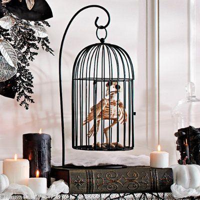 Skeleton Crow In Cage Halloween Decoration - Grandin Road