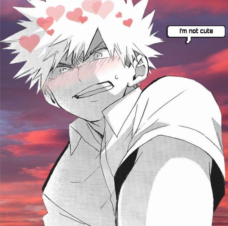 (Bakugou y Tu) Te Adoro Katsuki!!!! - comienzo-cap 1